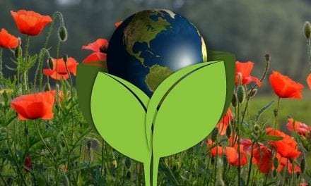 Charlotte Earth Day Events 2019