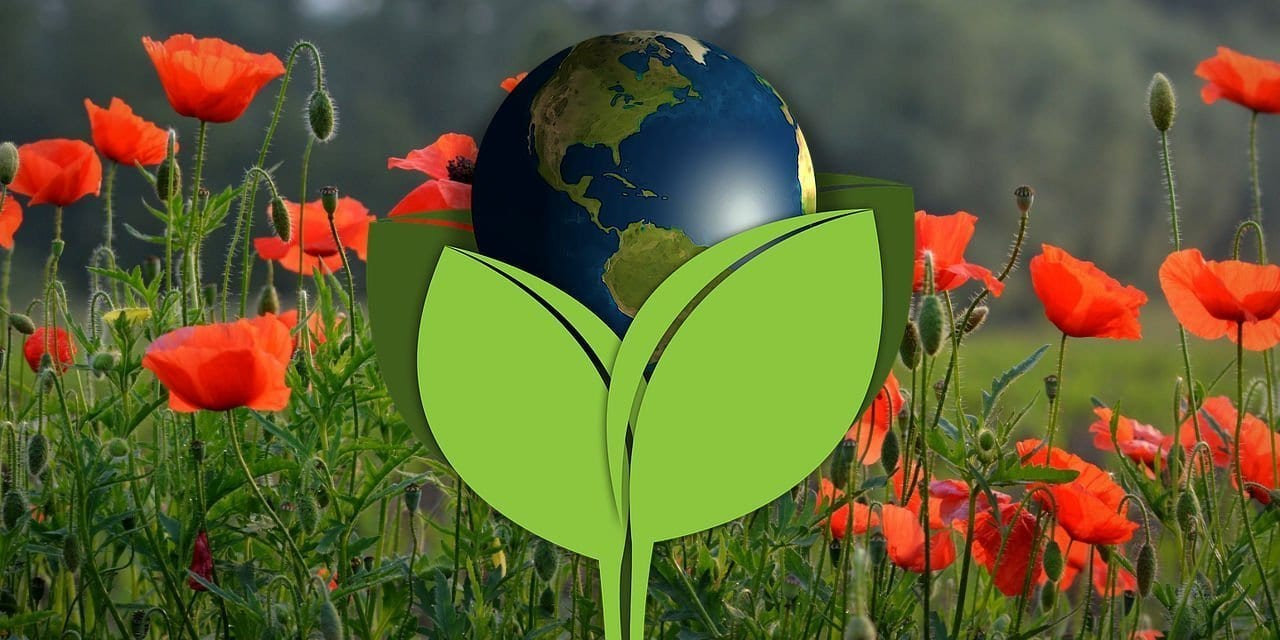 earth day 2019, earth day events, volunteer for earth day