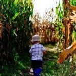 Five Fun Things To Do In Nashville With Kids