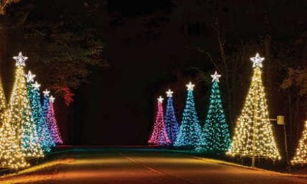 Christmas Lights in Atlanta